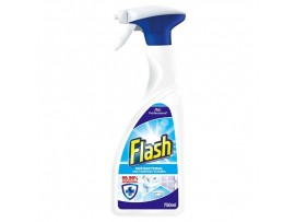 CLEANER MULTISURFACE FLASH