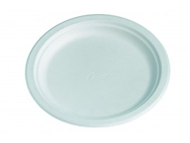 """PLATE DINNER CHINET 9.75"""""""