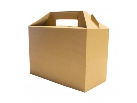 PACK CARRY STANDARD 22.5X9.5X12CM